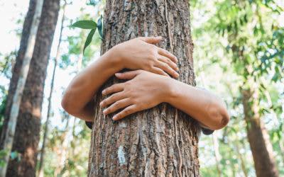 Naturschutz beginnt beim Wortschatz